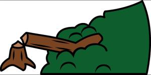 Wycinka drzew a firma sprzątająca