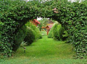 Wystrój wnętrz i projektowanie ogrodu w pensjonacie