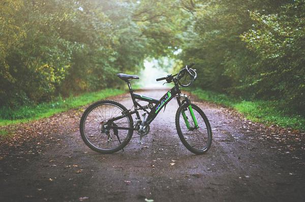 Jaki rower wybrać do jazdy po górach?